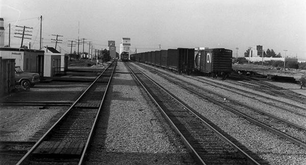 Camrose, AB, CN Yard, Look N from Train 694, May 1981 Bohi Photo